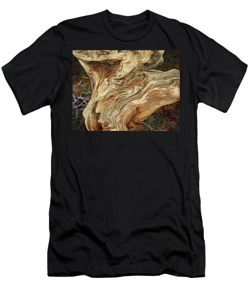 Men's T-Shirt (Athletic Fit) featuring the mixed media Forest Music 2 by Lynda Lehmann