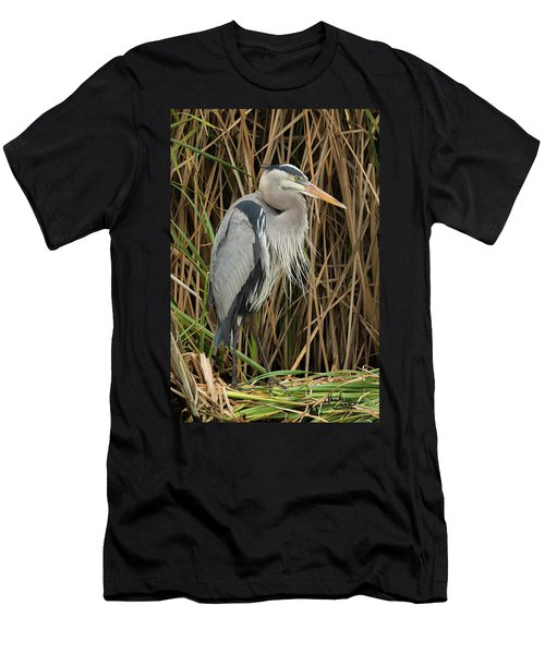 Great Blue Heron On Padre Island Men's T-Shirt (Athletic Fit)