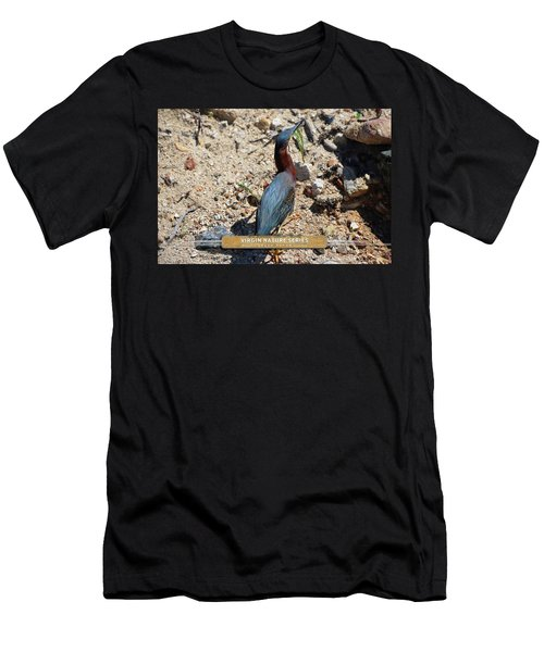 Green Heron Strut - Virgin Nature Series Men's T-Shirt (Athletic Fit)