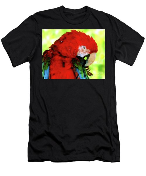 Green-winged Macaw Men's T-Shirt (Athletic Fit)