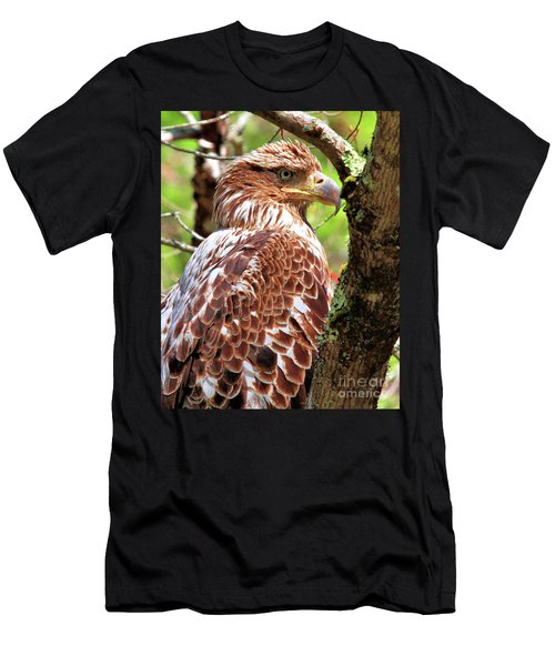Immature Eagle Men's T-Shirt (Athletic Fit)