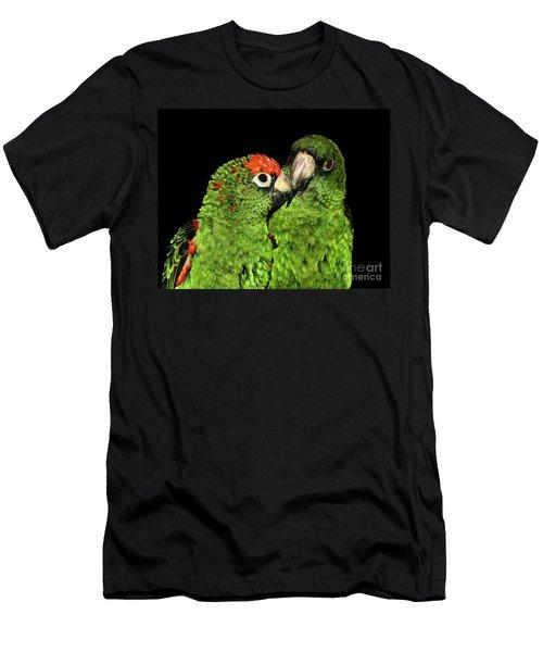Jardine's Parrots Men's T-Shirt (Athletic Fit)