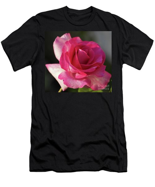 Late October Rose Men's T-Shirt (Athletic Fit)