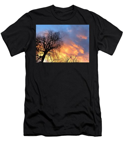 Leaning Willow Sunset Men's T-Shirt (Athletic Fit)