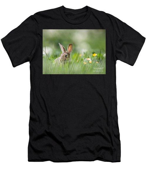 Little Hare Men's T-Shirt (Athletic Fit)