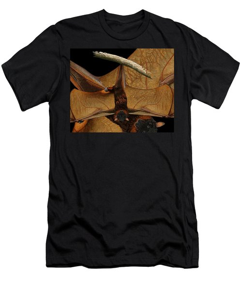 Little Red Flying Fox 2 Men's T-Shirt (Athletic Fit)