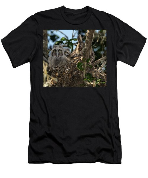 Long-eared Owl And Owlets Men's T-Shirt (Athletic Fit)