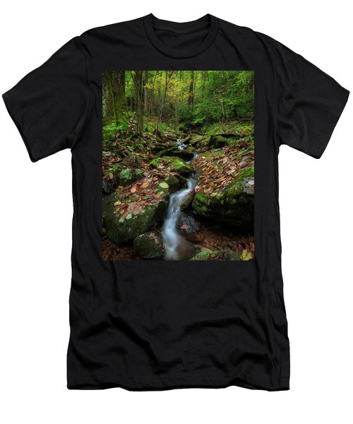 Mountain Stream - Blue Ridge Parkway Men's T-Shirt (Athletic Fit)