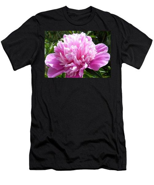 Okanagan Valley Peony Men's T-Shirt (Athletic Fit)
