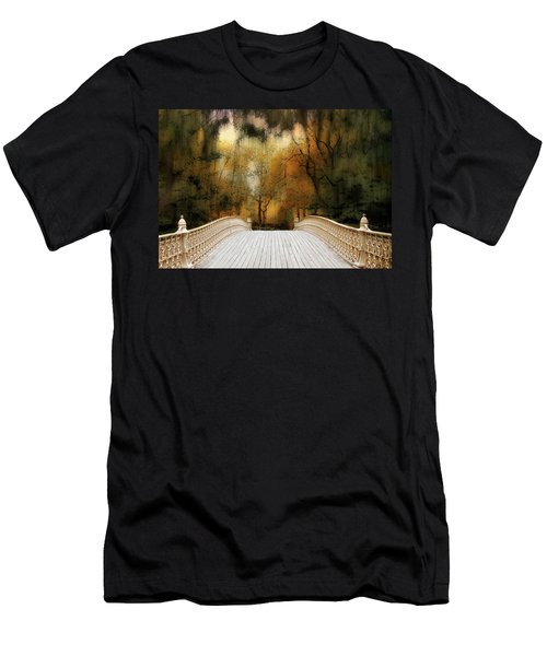 Pine Bank Arch In Autumn Men's T-Shirt (Athletic Fit)