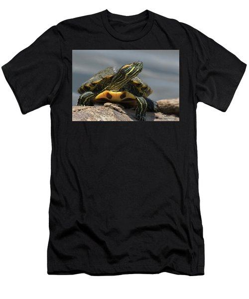 Portrait Of A Turtle Men's T-Shirt (Athletic Fit)