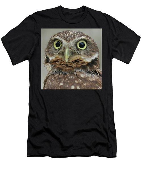 Portrait Of Burrowing Owl Men's T-Shirt (Athletic Fit)