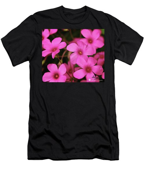 Pretty Pink Phlox Men's T-Shirt (Athletic Fit)