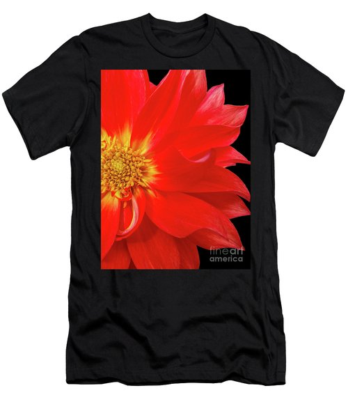 Red Dahlia On Black Background Men's T-Shirt (Athletic Fit)