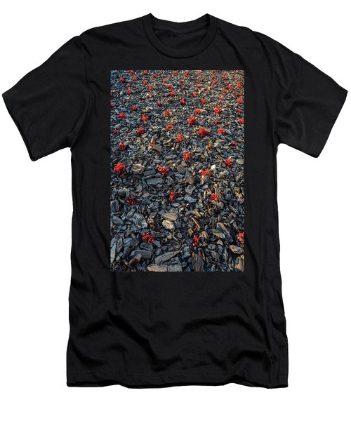 Red Flowers Over Stones Men's T-Shirt (Athletic Fit)