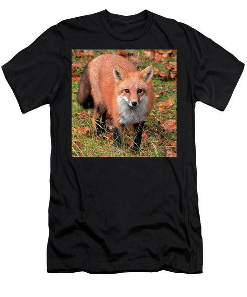 Men's T-Shirt (Athletic Fit) featuring the photograph Red Fox by Debbie Stahre