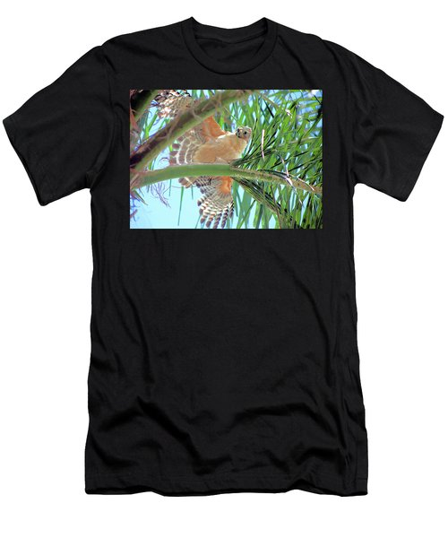 Red-shoulder Hawk Men's T-Shirt (Athletic Fit)