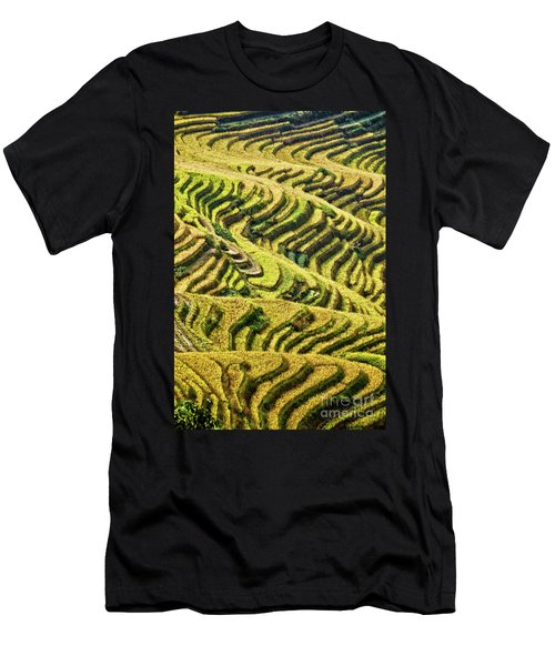 Rice Terraces In China Men's T-Shirt (Athletic Fit)