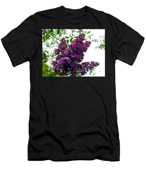 Select French Lilacs Men's T-Shirt (Athletic Fit)