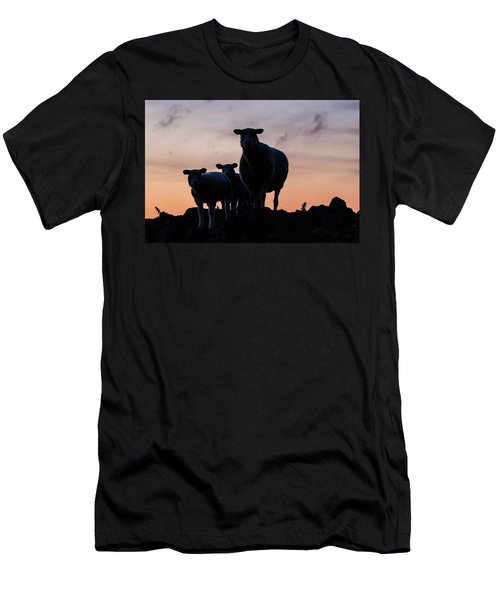 Men's T-Shirt (Athletic Fit) featuring the photograph Sheep Family by Anjo Ten Kate