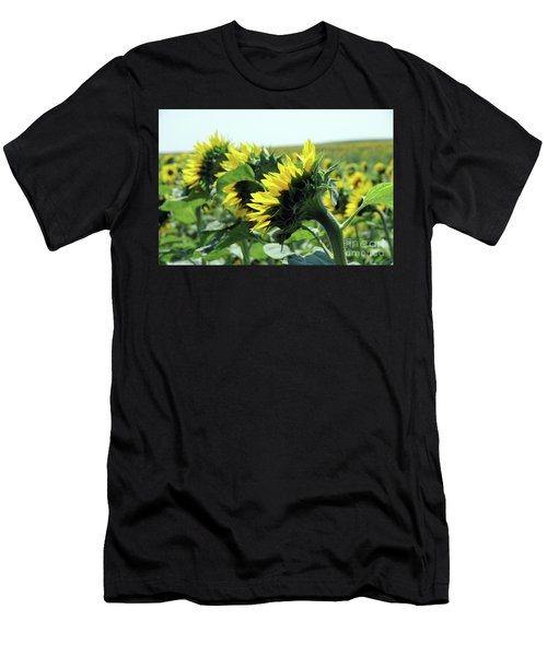 Sideview Of Three Sunflowers Men's T-Shirt (Athletic Fit)