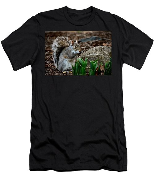 Squirrel And His Dinner Men's T-Shirt (Athletic Fit)
