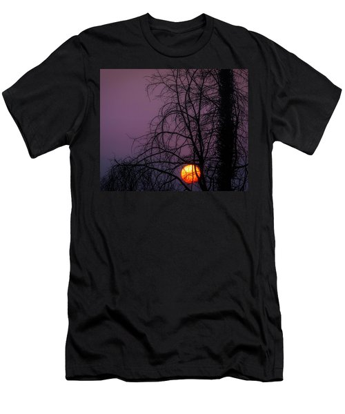 Sun Setting Through Trees Men's T-Shirt (Athletic Fit)