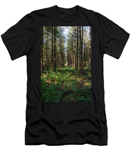Tall Trees In Sherwood Forest Men's T-Shirt (Athletic Fit)