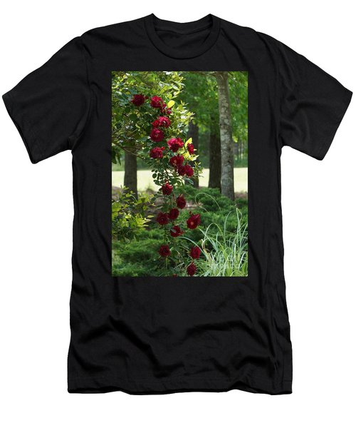 Tree Of Roses Men's T-Shirt (Athletic Fit)