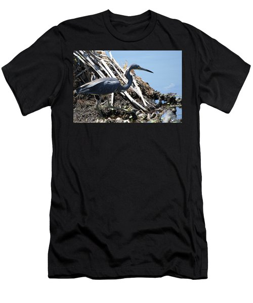 Tri-colored Heron 40312 Men's T-Shirt (Athletic Fit)