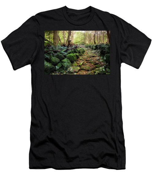 Waterfall Path Men's T-Shirt (Athletic Fit)
