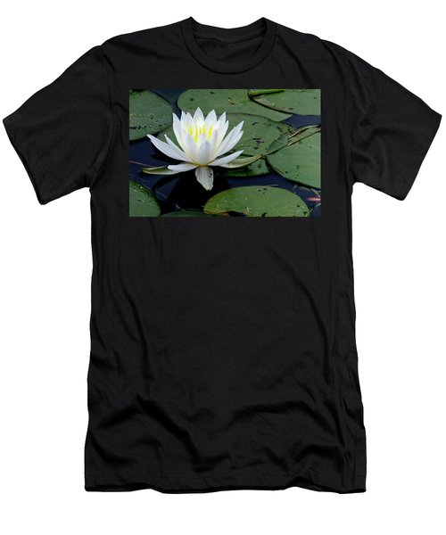 White Water Lilly Men's T-Shirt (Athletic Fit)