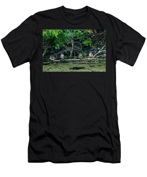 Men's T-Shirt (Athletic Fit) featuring the photograph Wood Ducks In A Row by Edward Peterson