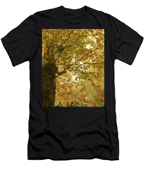 Yellow Fall Leaves - Blue Ridge Parkway Men's T-Shirt (Athletic Fit)