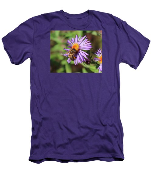 Honeybee On Purple Wild Aster Men's T-Shirt (Athletic Fit)