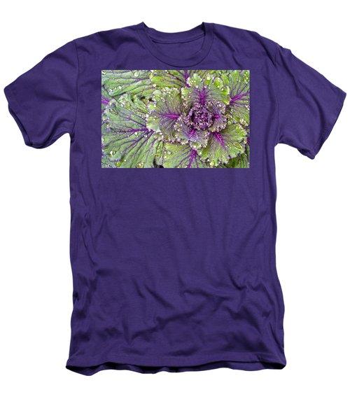 Kale Plant In The Rain Men's T-Shirt (Athletic Fit)