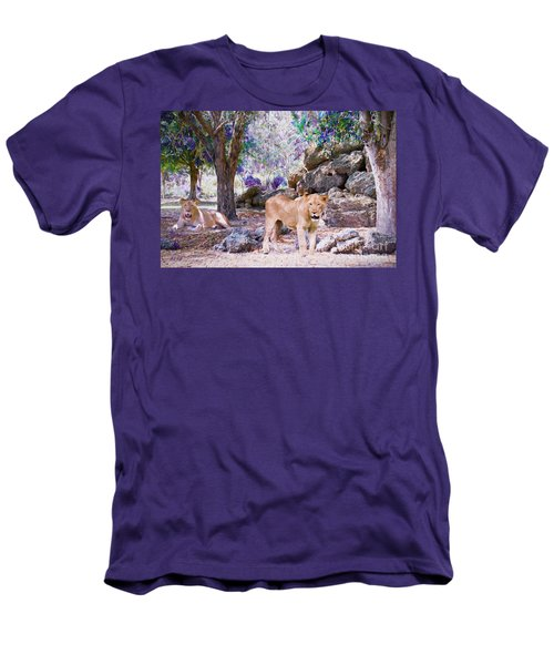 Men's T-Shirt (Slim Fit) featuring the painting The Lions by Judy Kay