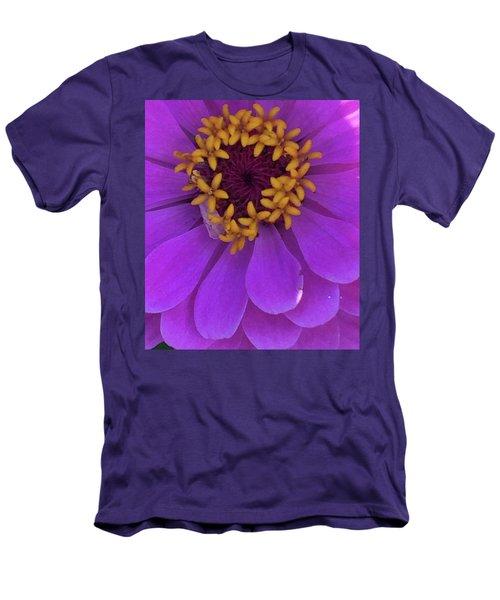 Fuschia Zinnia Men's T-Shirt (Athletic Fit)