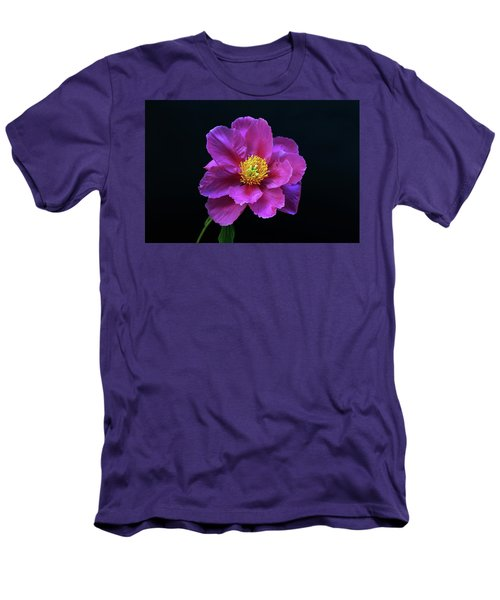 Peony - Beautiful Flowers And Decorative Foliage On The Right Is One Of The First Places Among The G Men's T-Shirt (Athletic Fit)
