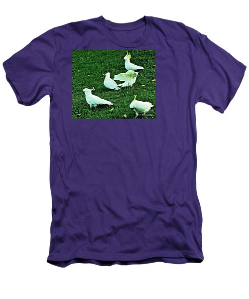 Picnic In The Park Men's T-Shirt (Athletic Fit)