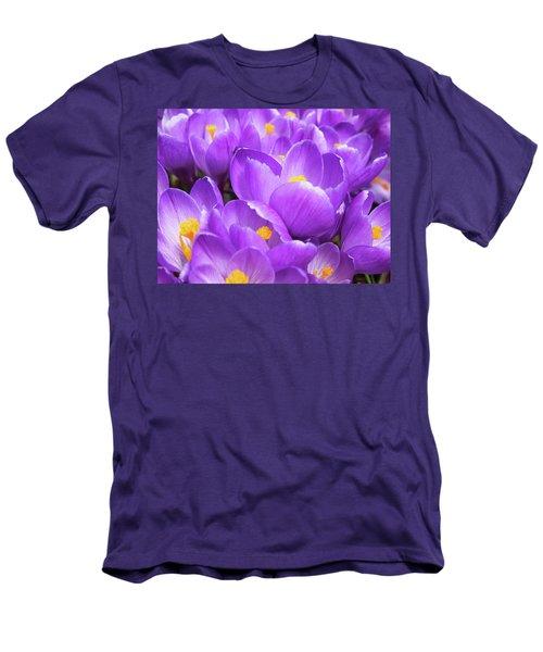 Purple Crocuses Men's T-Shirt (Athletic Fit)
