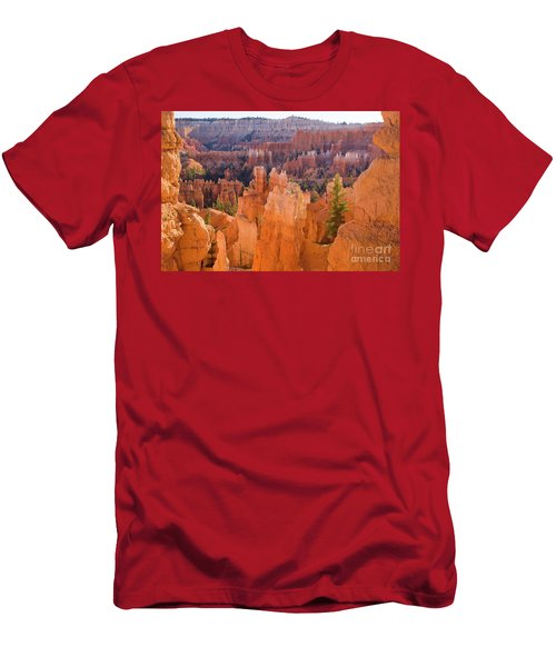 Sandstone Hoodoos Bryce Canyon  Men's T-Shirt (Athletic Fit)