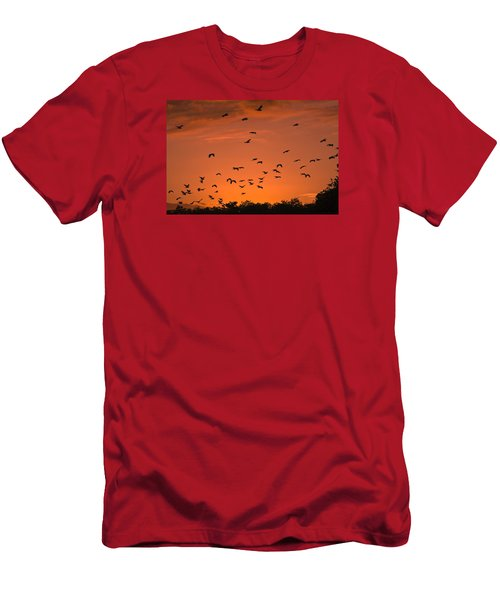Birds At Sunset Men's T-Shirt (Slim Fit) by Sally Weigand