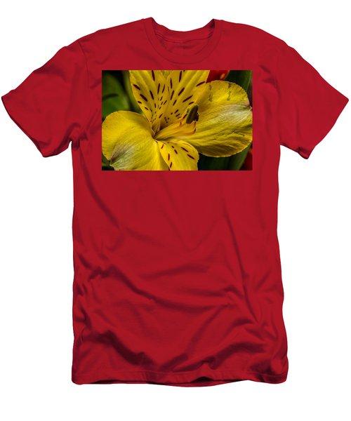 Alstroemeria Bloom Men's T-Shirt (Athletic Fit)