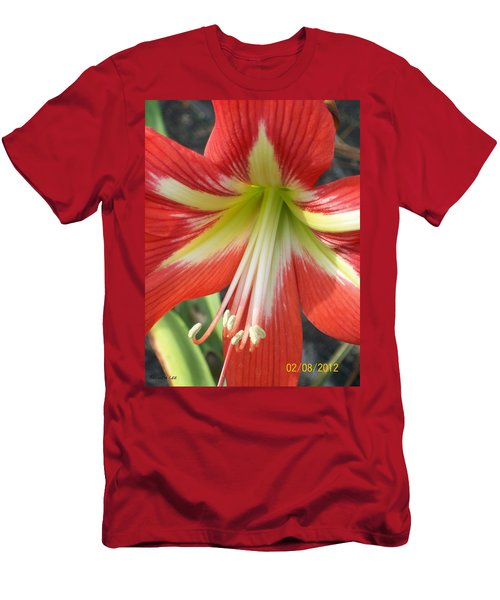 Men's T-Shirt (Slim Fit) featuring the photograph Amarylis Full Bloom by Belinda Lee