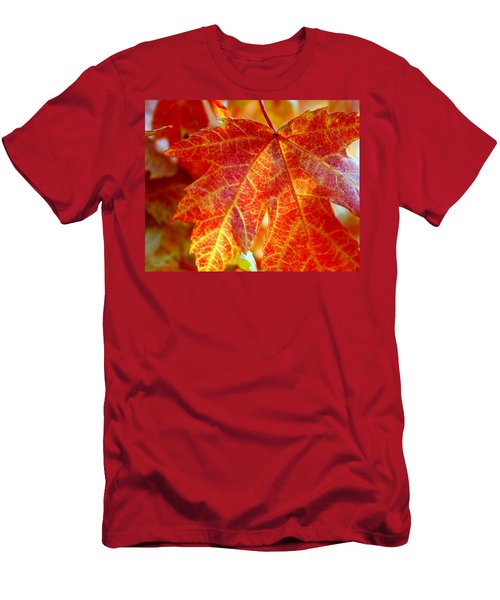 Autumn Blaze Men's T-Shirt (Athletic Fit)