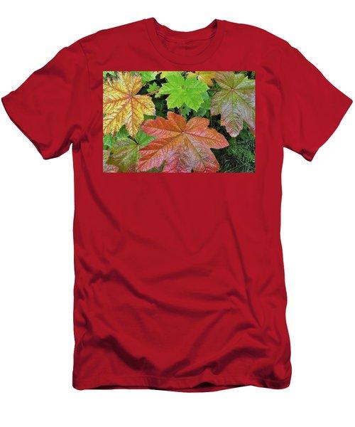 Autumn Devil's Club Men's T-Shirt (Athletic Fit)