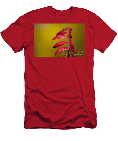 Autumn Sumac Men's T-Shirt (Athletic Fit)