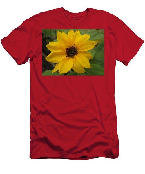 Baby Sunflower Men's T-Shirt (Athletic Fit)