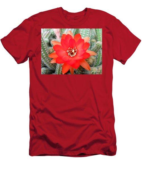 Cactus Flower Men's T-Shirt (Slim Fit) by Ramona Matei